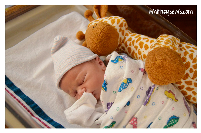 Skyler's Giraffe Friend